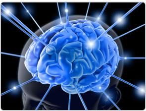 5f074484_brainwave